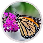 004 Making Things New Via The Butterfly Series Round Beach Towel