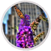 009 Making Things New Via The Butterfly Series Round Beach Towel