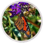 011 Making Things New Via The Butterfly Series Round Beach Towel
