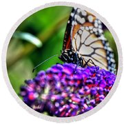 012 Making Things New Via The Butterfly Series Round Beach Towel