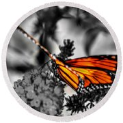 014 Making Things New Via The Butterfly Series Round Beach Towel