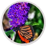 015 Making Things New Via The Butterfly Series Round Beach Towel