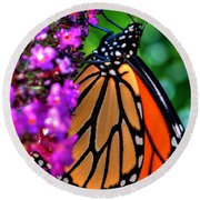 007 Making Things New Via The Butterfly Series Round Beach Towel