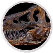A Genuine Fossilized Skull Of A T. Rex Round Beach Towel