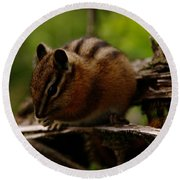 A Little Chipmunk Round Beach Towel