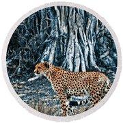 Alert Cheetah Round Beach Towel by Darcy Michaelchuk