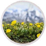 Alpine Meadow In Jasper National Park Round Beach Towel by Elena Elisseeva