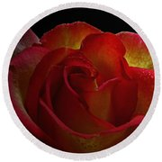 Annaversary Rose I  Round Beach Towel