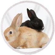 Black And Sandy Rabbits Round Beach Towel