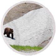 Black Bear Round Beach Towel