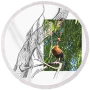 Black-bellied Whistling-duck Round Beach Towel