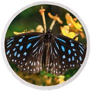 Blue Glassy Tiger Butterfly Round Beach Towel