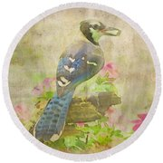 Blue Jay With Texture II Round Beach Towel