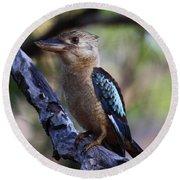 Blue-winged Kookaburra Round Beach Towel