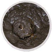 Bullfrog Round Beach Towel