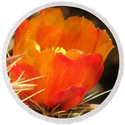 Cactus Flower Round Beach Towel
