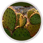 Cactus Heart In Sunset Round Beach Towel