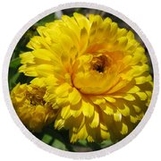 Calendula Named Bon-bon Yellow Round Beach Towel