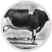 Cattle, 19th Century Round Beach Towel
