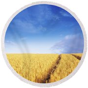 Co Carlow, Ireland Barley Round Beach Towel