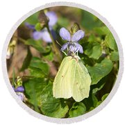 Common Brimstone  Round Beach Towel