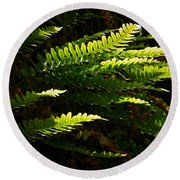 Common Polypody Round Beach Towel