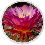 Dark Pink Cactus Flower Round Beach Towel