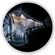 Deep-sea Hatchetfish Round Beach Towel