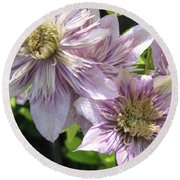 Double Clematis Named Empress Round Beach Towel