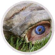 Eye Of A Dinosaur Lightning Round Beach Towel