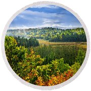 Fall Forest Rain Storm Round Beach Towel by Elena Elisseeva
