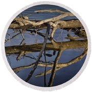 Fallen Tree Trunk With Reflections On The Muskegon River Round Beach Towel