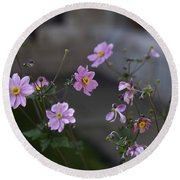 Flowers At The Cloisters Round Beach Towel