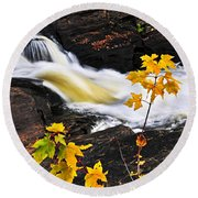 Forest River In The Fall Round Beach Towel by Elena Elisseeva