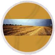 Golden Harvest Field 1 Round Beach Towel