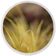 Grass Abstract 2 Round Beach Towel