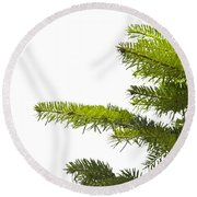 Green Branches Of A Christmas Tree Round Beach Towel