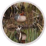 Greenwing Teal Round Beach Towel