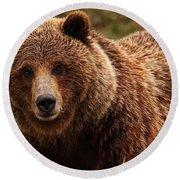 Grizzly Bear, Yukon Round Beach Towel