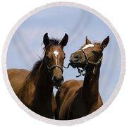 Horse Foul Play Iv Round Beach Towel