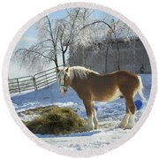 Horse On Maine Farm After Snow And Ice Storm Round Beach Towel