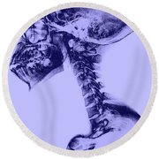 Human Skull And Spine Round Beach Towel
