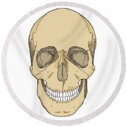Illustration Of Anterior Skull Round Beach Towel