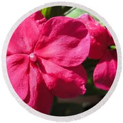 Impatiens Named Dazzler Burgundy Round Beach Towel