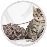 Kitten With Yarn Round Beach Towel