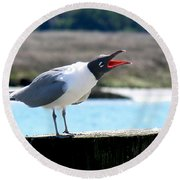 Laughing Gull Round Beach Towel