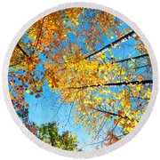 Looking Up At All The Colors Round Beach Towel