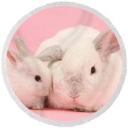 Lop Rabbits Round Beach Towel