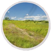 Maine Blueberry Field In Summer Round Beach Towel