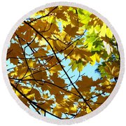 Maple Leaf Canopy Round Beach Towel